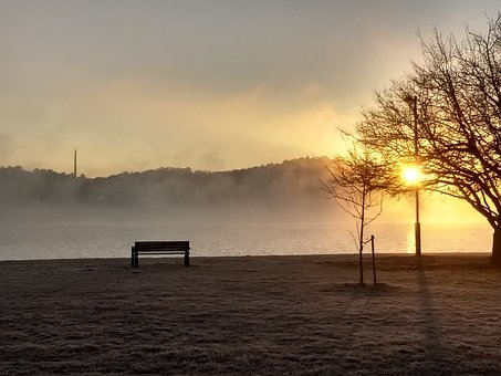 Winter, Sunrise, Lake, Landscape, Nature, Trees