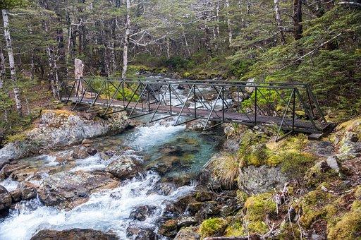 Nelson Lakes National Park, River, Stream, Bridge