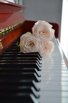 Piano, Keyboard, White, Black, Musician, Sheet Music
