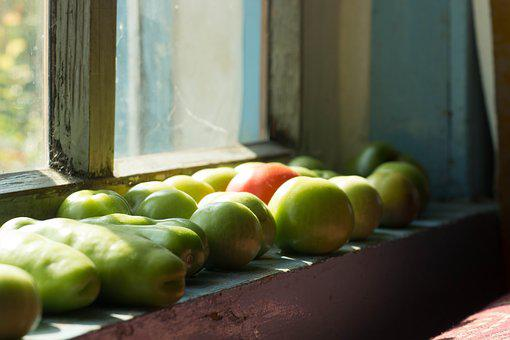 Tomatoes, Window, Nutrition, Healthy, Vegetables