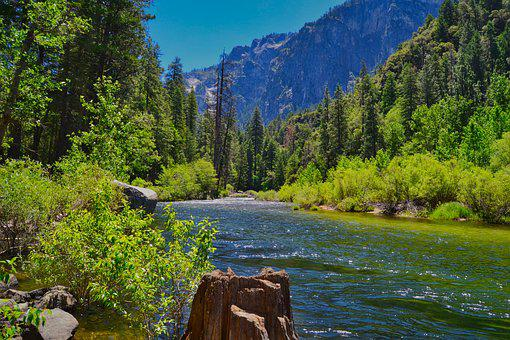 Nature, Landscape, Bach, Bank, Yosemite, Water, Usa