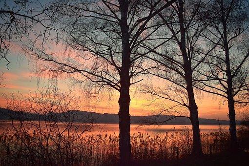 Sunset, Mood, Landscape, Sun, Clouds, Evening Sky