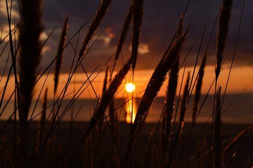 Nature, Sunset, Coast, Sea, Landscape, Evening, Clouds