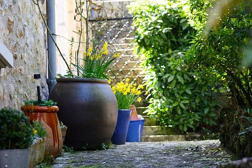 Courtyard Pots, Courtyard Garden, Plant Pots