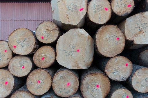 Log, Timberyard, Mark, Valuable, Timber, Storage