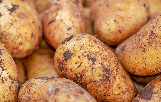 Potatoes, Vegetables, Erdfrucht, Food, Healthy