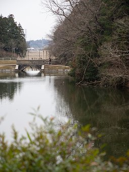 Park, Pond, Holiday, Natural, Water, Landscape, Lake