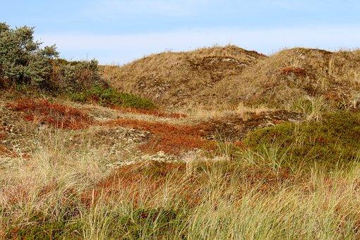 Langeoog, Dune, Sky, Coast, Nature, East Frisia