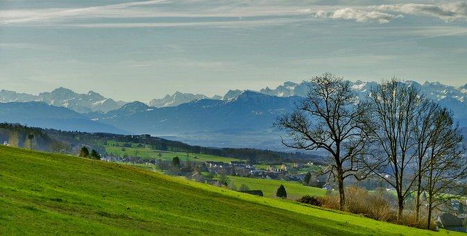 Landscape, Switzerland, Nature, Meadow, Trees