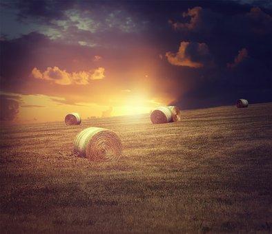 Landscape, Straw, Straw Bales, Evening Sun, Twilight