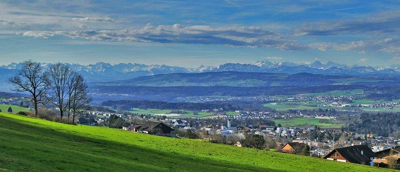 Landscape, Switzerland, Alpine, Meadow, Trees