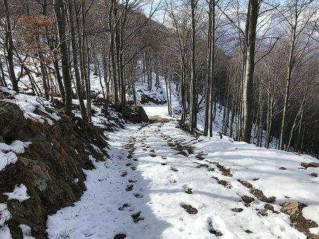 The Road To Alpe Spoccia, Alpine Route, Alps, Alpine