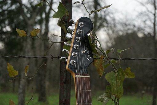 Electric Guitar, Guitar, Music, Band, Rock, Musician