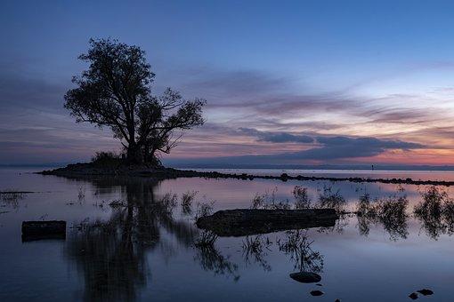 Hard, Lake, Tree, Sunrise, Sunset, Shadow, Sky