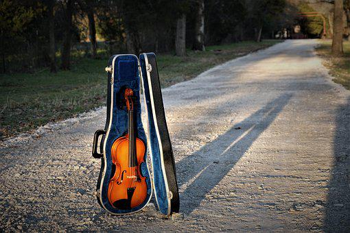 Violin, Instrument, Music, Orchestra, Musician
