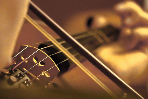 Violin, Bow, Playing, Close-up, Musician, Music, Motion