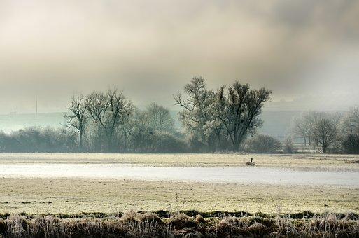 Landscape, Field, Fog, Flood, Nature, Rural, Trees, Sky