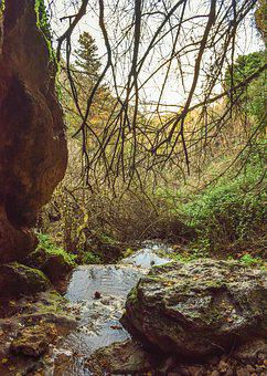 Cave, Creek, Stream, Nature, Scenery, Forest, Woods