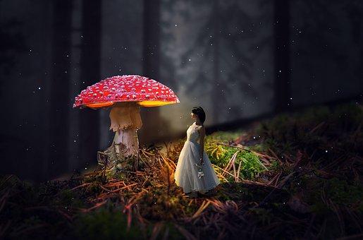 Girl, Mushroom, Forest, Fairytale, Fairy Tale, Woman