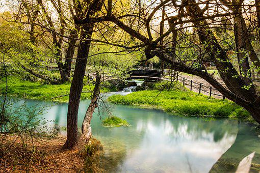 River, Park, Nature, Landscape, Outdoors, Water, Trees