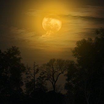 Moon, Night, Moonlight, Dark, Fantasy, Midnight, Sky