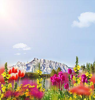 Flowers, Mountain, Sky, Outlook, Spring, Background
