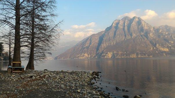 Lake, Mountain, Trees, Sky, Fog, Nature, Mountains