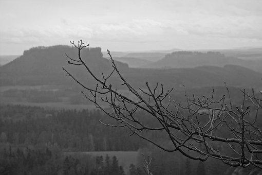 Saxon Switzerland, Elbe Sandstone Mountains, Lily Stone