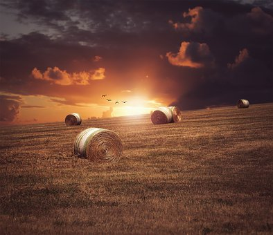 Field, Straw, Sunset, Nature, Sky, Straw Bales