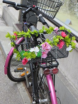 Bike, Pink, Flower, Basket