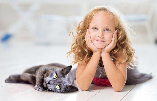 Girl, Cat, Concerns, Relax, Friends, Pet, Domestic Cat