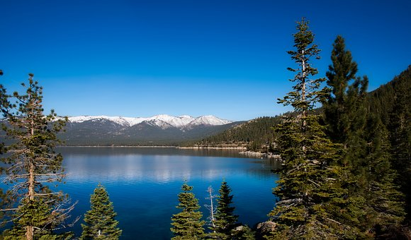 Lake Tahoe, Tourism, Reflections, Landscape, Forest