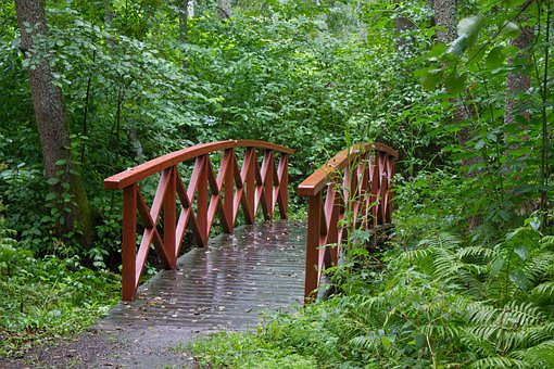 Bridge, Small Bridge, Red, Green, Trees, Leaf