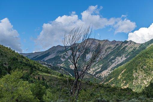 Mountain, Hills, Basin, Alpine, Alps, Trees, Landscape