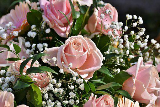 Rose, Bouquet Of Roses, Rose Bloom, Bouquet, Blossom