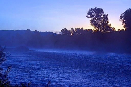 Gros Ventre River Mist, Mist, Morning, Forest, Fog