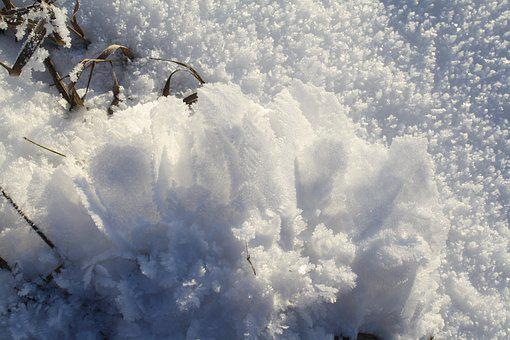 Winter, Ice, Snow, Nature, Beautiful, Frost, Light