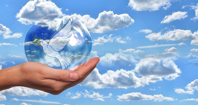 Peace Dove, Harmony, Dove, Hand, Keep, Soap Bubble