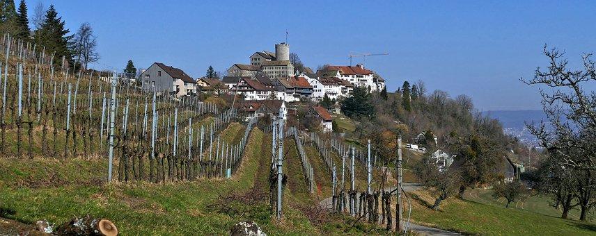 Landscape, Switzerland, Rain Mountain, Winegrowing