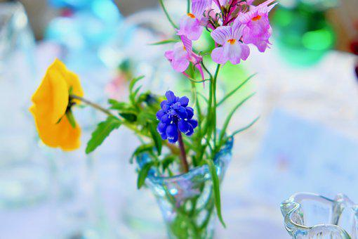 Flowers, Grass, Bottle, Crystal, Spring, Table