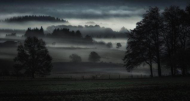 Fog, Valley, Landscape, Nature, Mountains, Forest