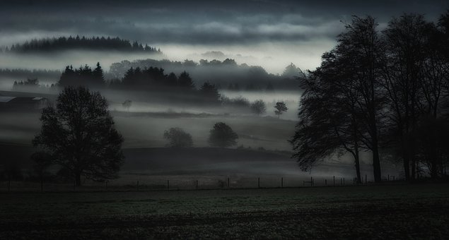 Fog, Valley, Landscape, Nature, Mountains, Forest