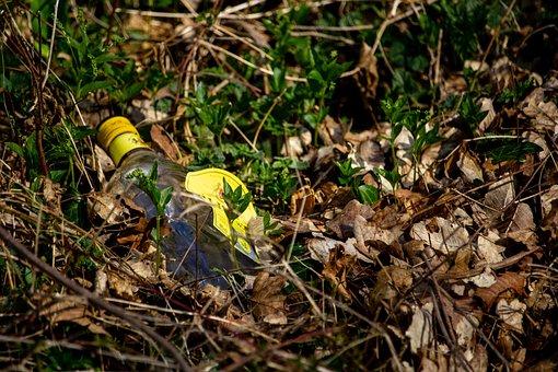Pollution, Sustainable Development, Glass Bottle