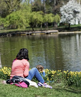 Park, Nature, Lake, Trees, Landscape, People, Woman