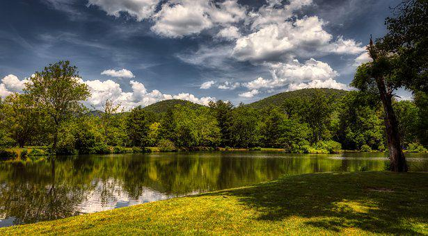 North Carolina, America, Lake, Reflections, Summer