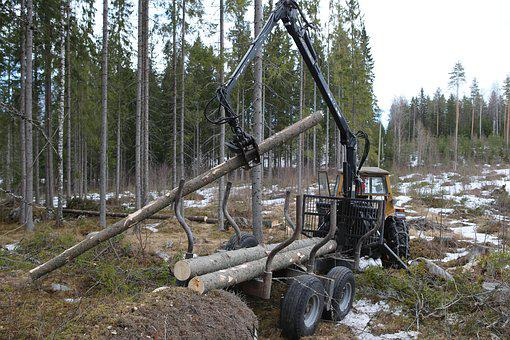 Forest, Logging, Tree, Forest Cart, Tractor, Loading