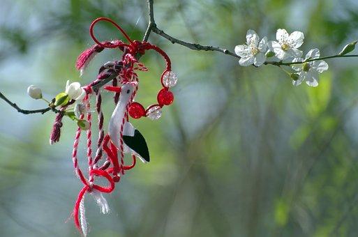 Branch, The Beginning Of Spring, Martiniza