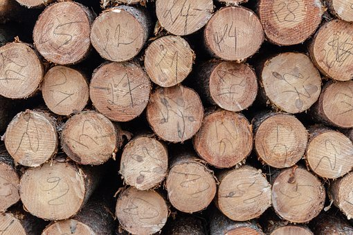 Wood, Cut, Forest, Nature, Tree, Stack, Trunk, Cutting