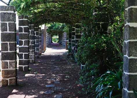 Alley, Old, Shady, Stone, Green, Wall, Garden, Path