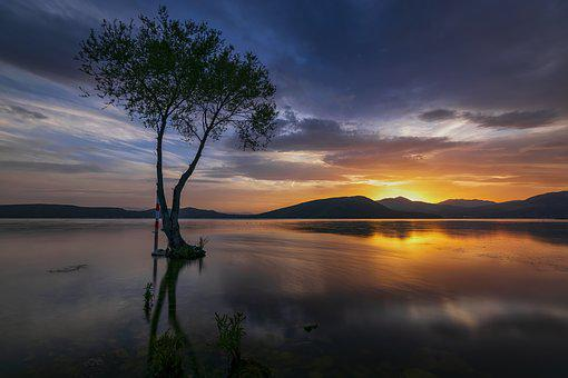 Tree, Lake, Landscape, Trees, Clouds, Reflection, Sky